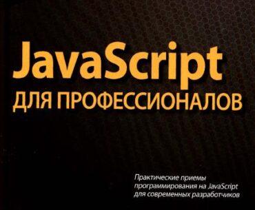 javascript dlja professionalov 370x305 - JavaScript для профессионалов (2016)